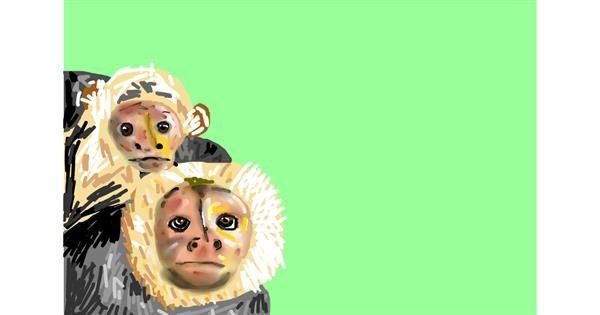 Monkey drawing by Soaring Sunshine