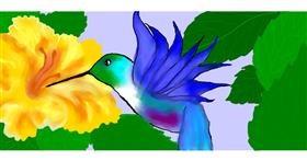 Drawing of Hummingbird by Debidolittle