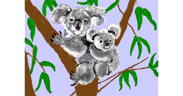 Koala drawing by SAM 🙄AKA Margaret