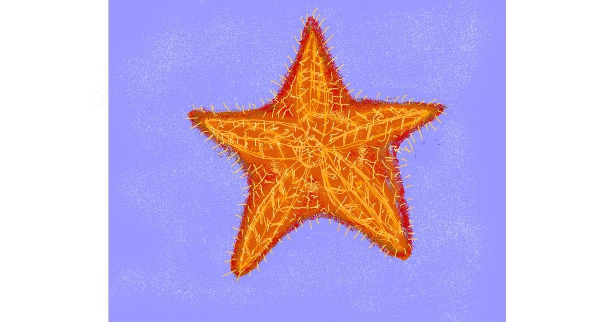 Starfish drawing by Cherri