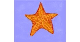 Starfish drawing by Cherri