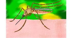 Mosquito drawing by GJP