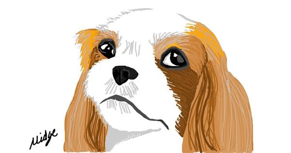 Dog drawing by The_World_of_Midge