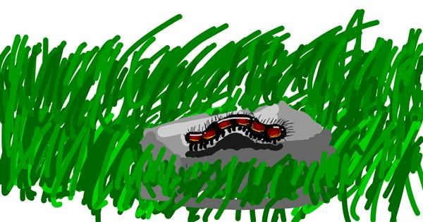 Caterpillar drawing by Ur my frnds