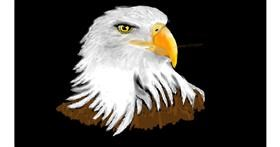 Drawing of Eagle by SAM AKA MARGARET 🙄