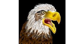 Drawing of Eagle by Rash