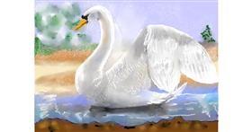 Swan drawing by SAM 🙄