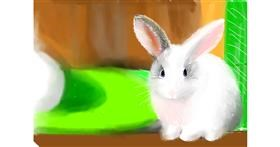 Bunny drawing by Pam