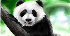 Drawing of Panda by Soaring Sunshine