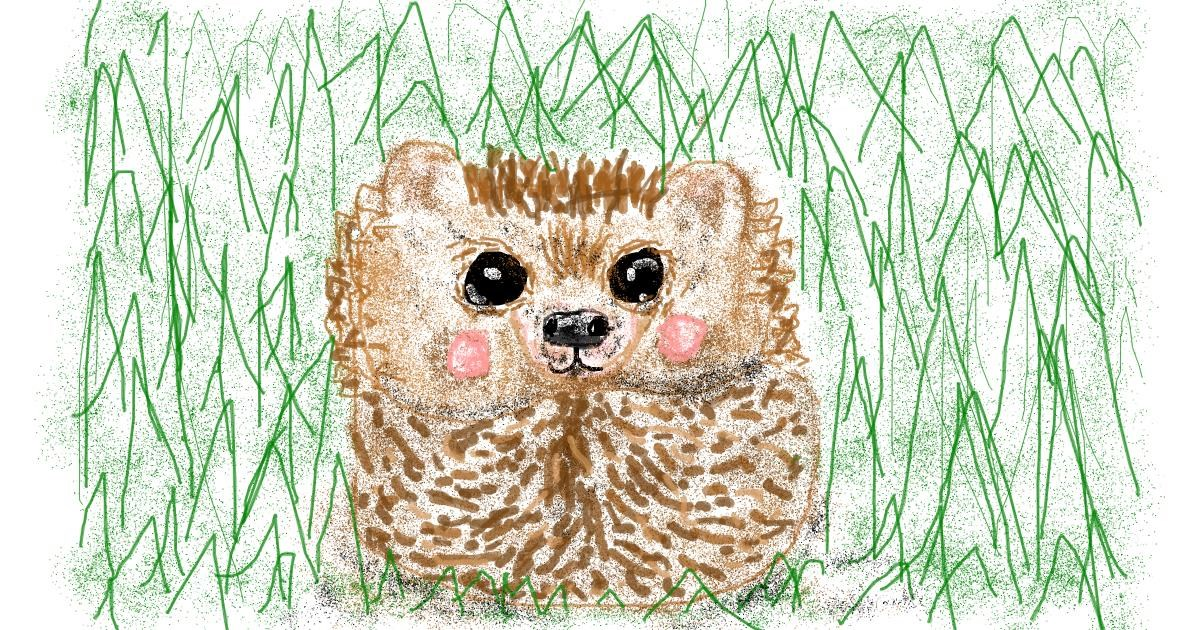 Hedgehog drawing by Banana