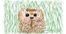 Hedgehog drawing by Banana