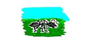 Ant drawing by emily