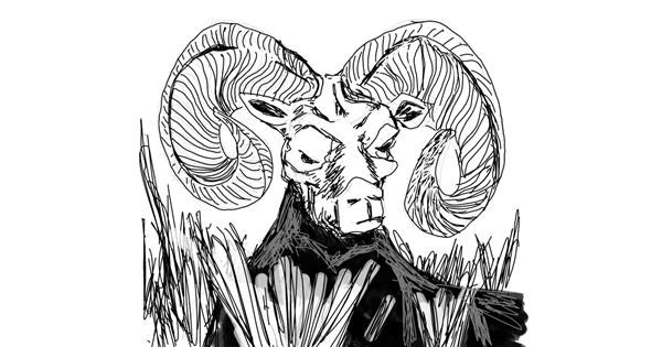 Sheep drawing by Dettale