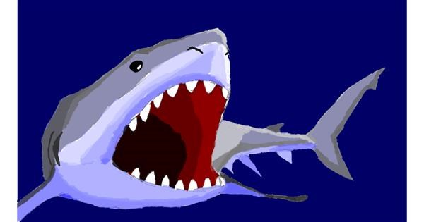 Shark drawing by Sam