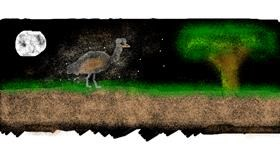 Drawing of Ostrich by Turtle