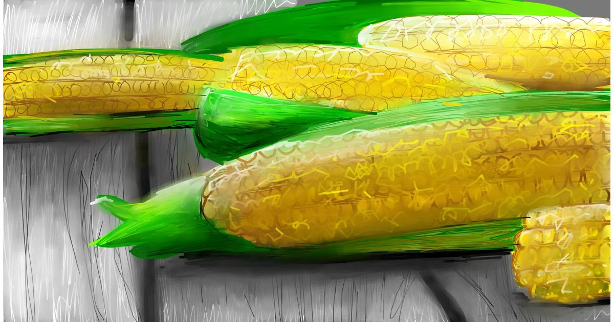 Drawing of Corn by Soaring Sunshine