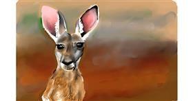 Drawing of Kangaroo by Rose rocket