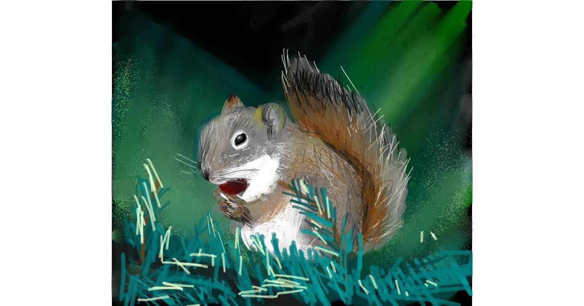 Squirrel drawing by Muni