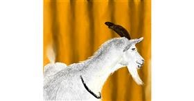 Drawing of Goat by Rash
