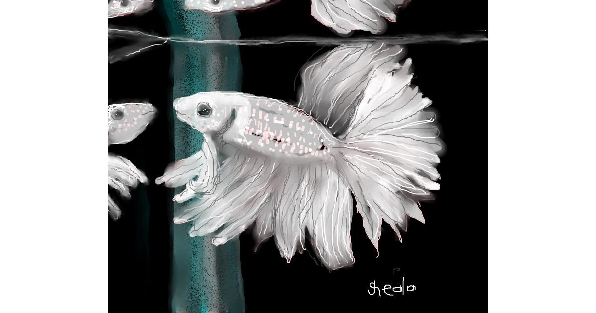 Mirror drawing by Kai 🐾