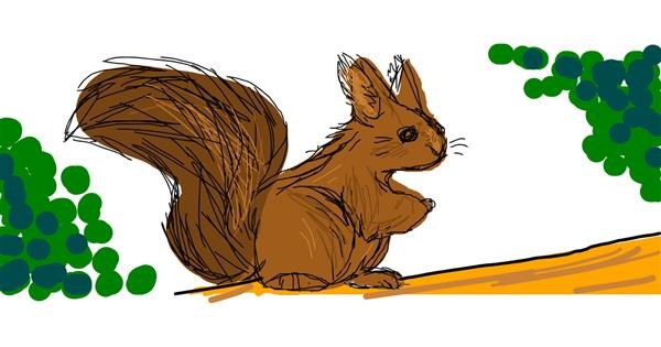 Squirrel drawing by Nan