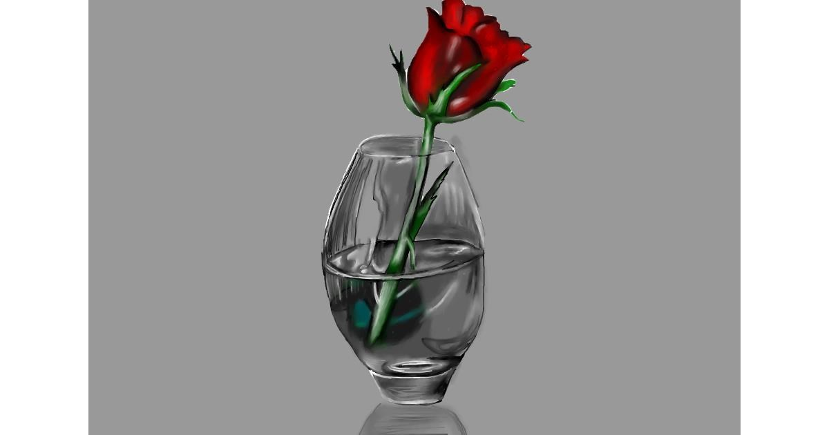 Rose drawing by Jan
