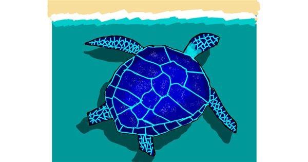 Sea turtle drawing by MaRi