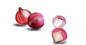 Onion drawing by Jan