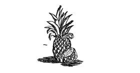 Pineapple drawing by SHADOW