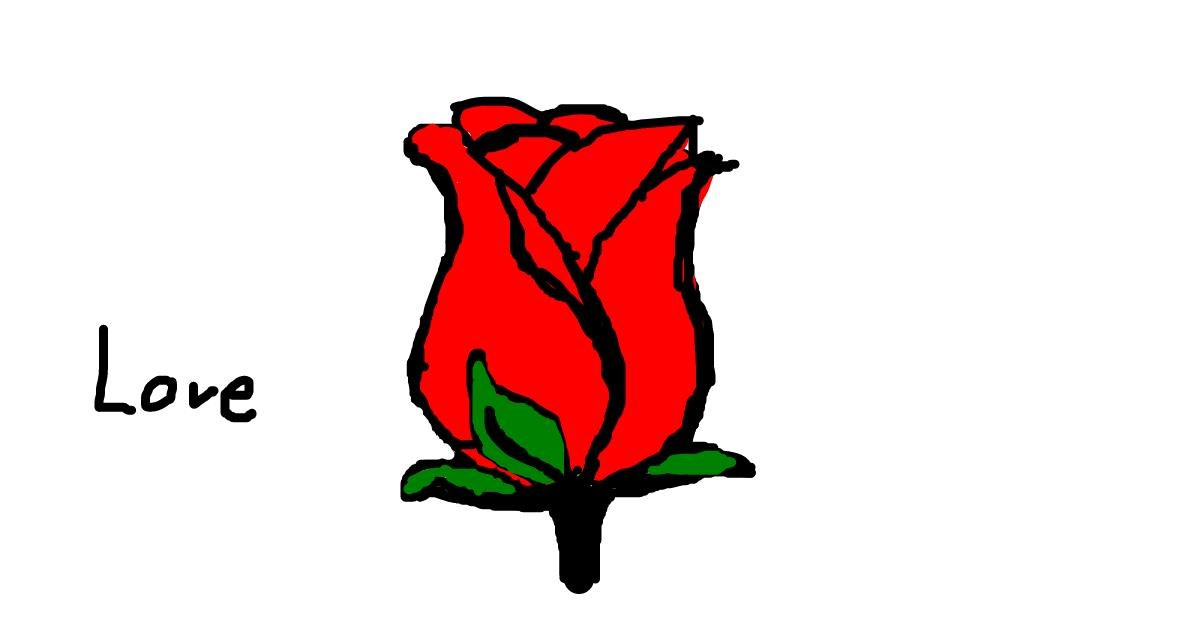 Rose drawing by Riley