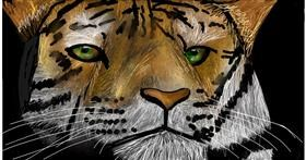 Tiger drawing by Soaring Sunshine