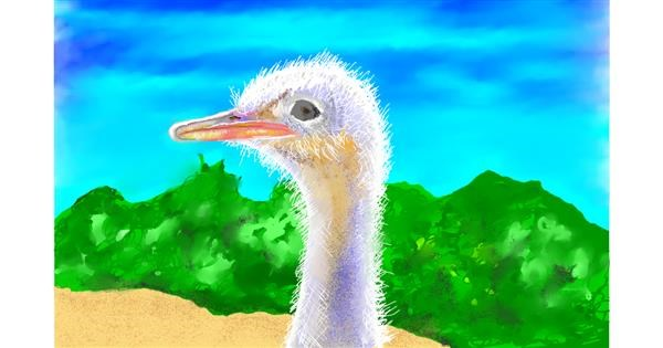 Ostrich drawing by GJP