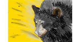 Bear drawing by teidolo