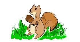 Squirrel drawing by Lsk