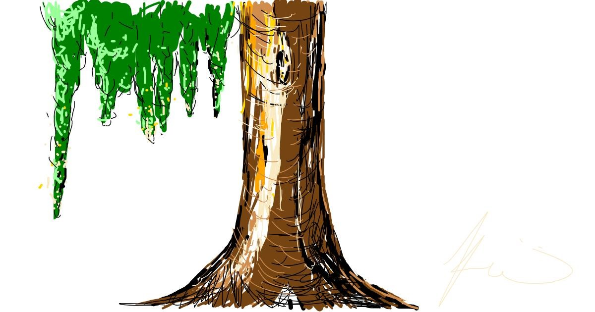 Tree drawing by heheh