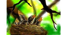 Nest drawing by DaVinky