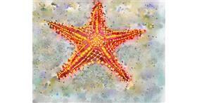 Starfish drawing by Kai 🐾