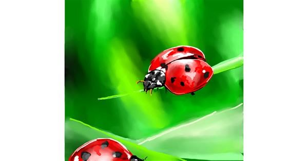 Ladybug drawing by Elliev