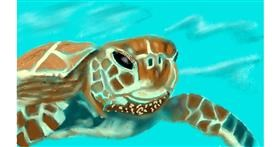 Drawing of Sea turtle by Tim