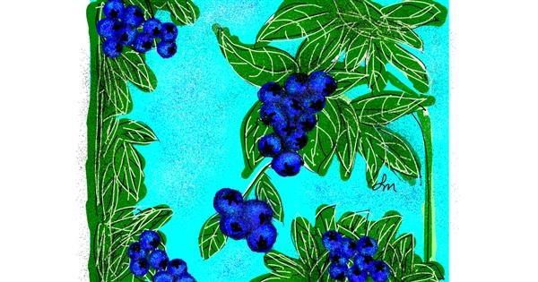 Blueberry drawing by Nonuvyrbiznis