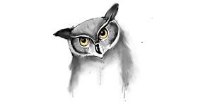 Owl drawing by JSim
