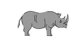 Rhino drawing by alison