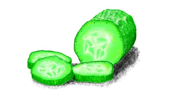 Cucumber drawing by Sam