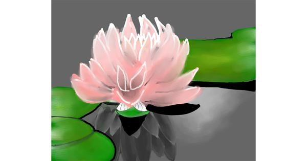 Water lily drawing by Bro 2.0😎
