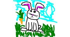 Rabbit drawing by dscwvjh