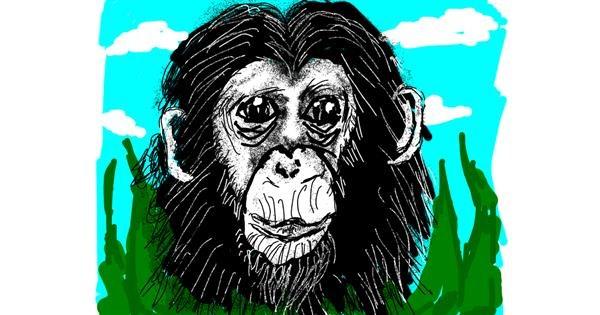 Monkey drawing by Cherri