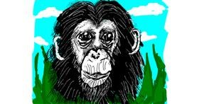 Monkey drawing by Cherri