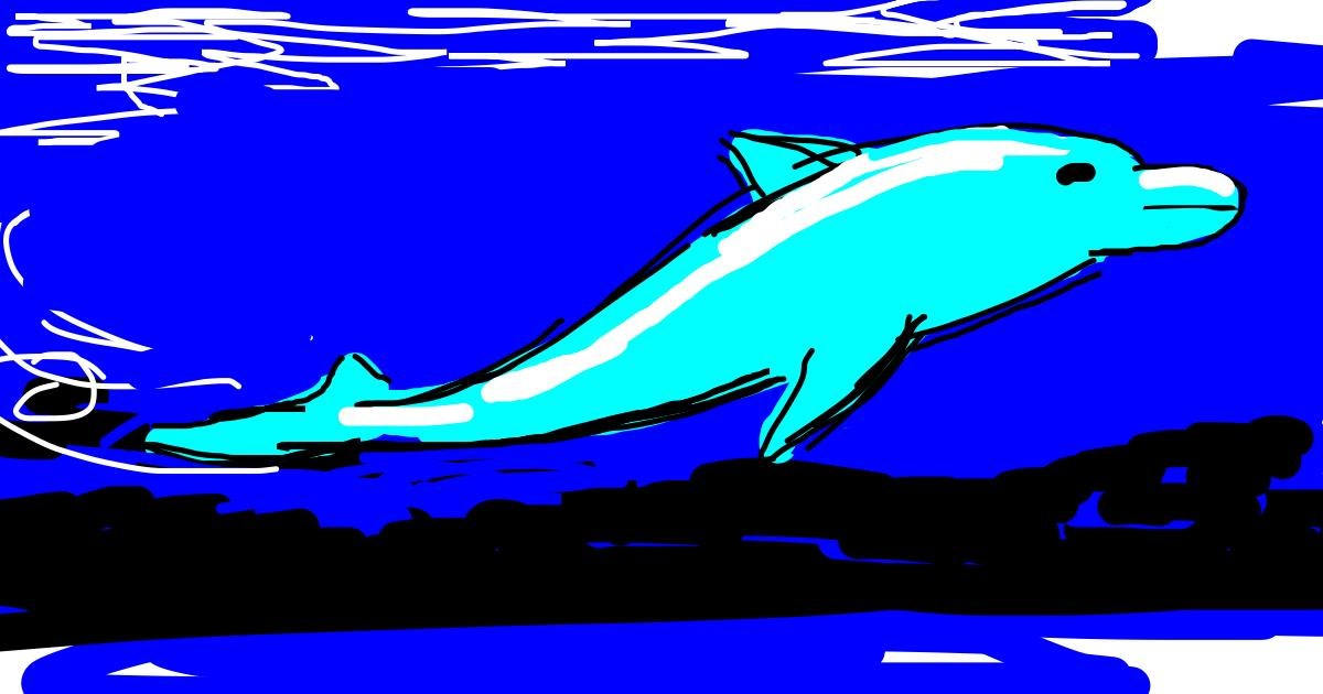 Dolphin drawing by Boris