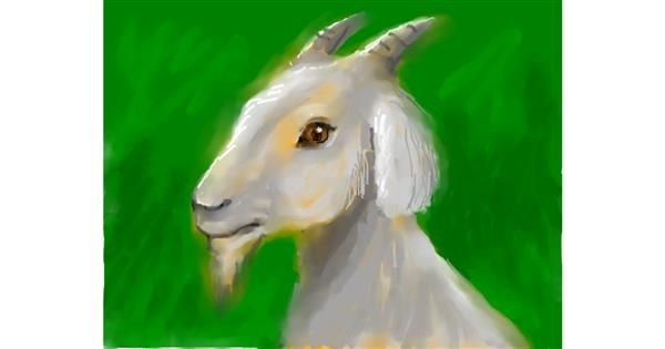 Goat drawing by 🌈SunShine🐴🌻