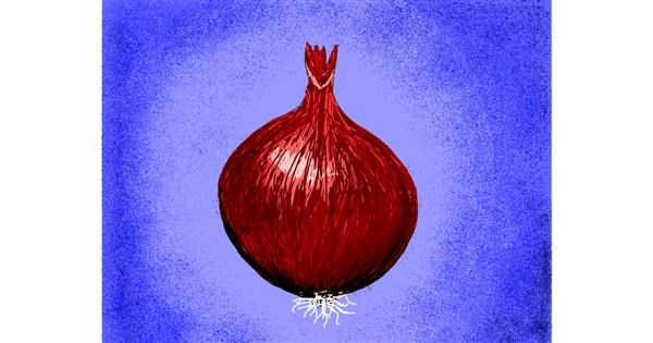 Onion drawing by Darta